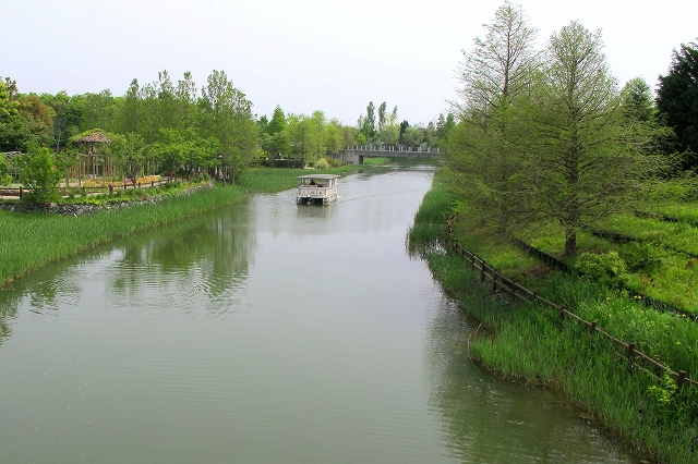 浜名湖ガーデンパーク-7