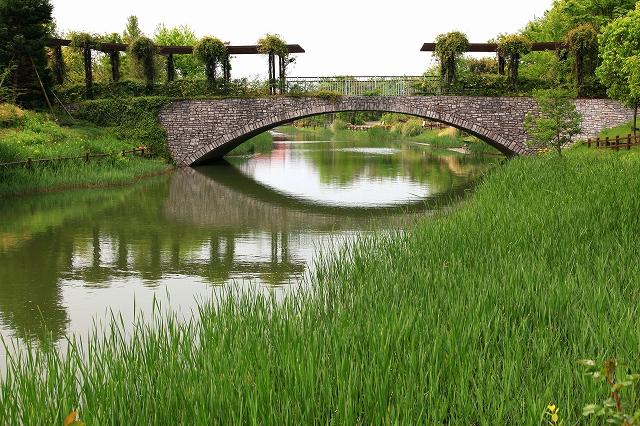 浜名湖ガーデンパーク-5