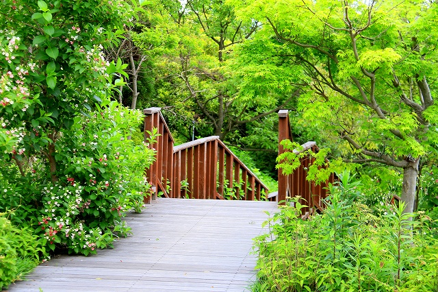 明石海峡公園-10