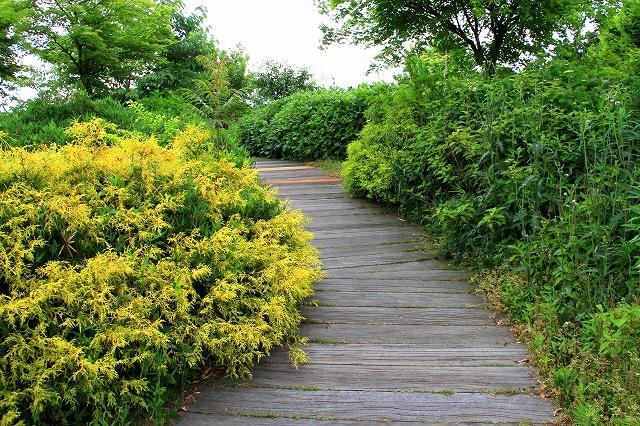 明石海峡公園-12