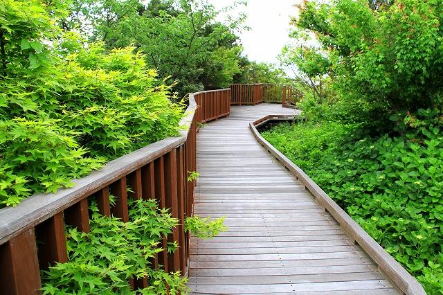 明石海峡公園−11