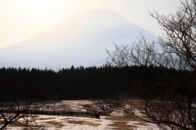 朝霧高原-9