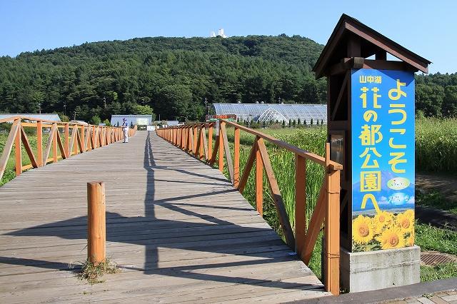 山中湖・花の都公園-1