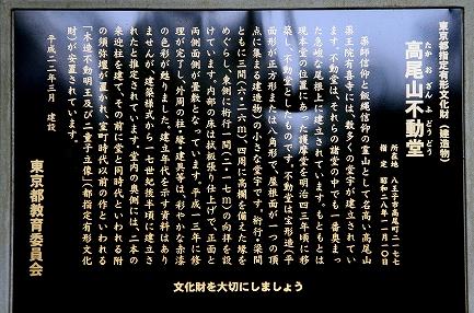 高尾山-3
