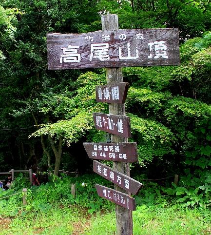 高尾山-7