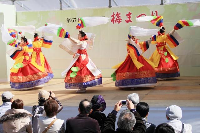 韓国舞踊-6