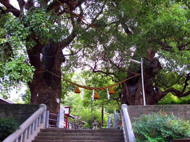山王神社-1