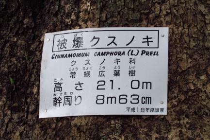 山王神社-2