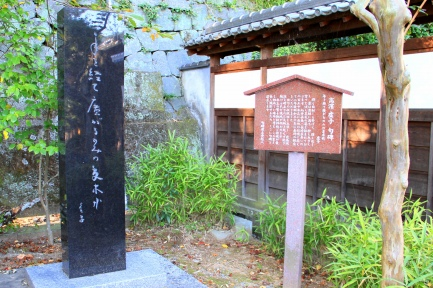 諏訪神社-9