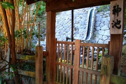 諏訪神社-4