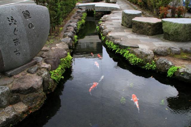 鯉の泳ぐまち-12