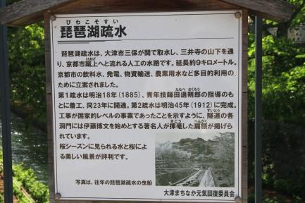 琵琶湖疏水-2