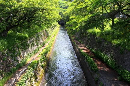 琵琶湖疏水-8