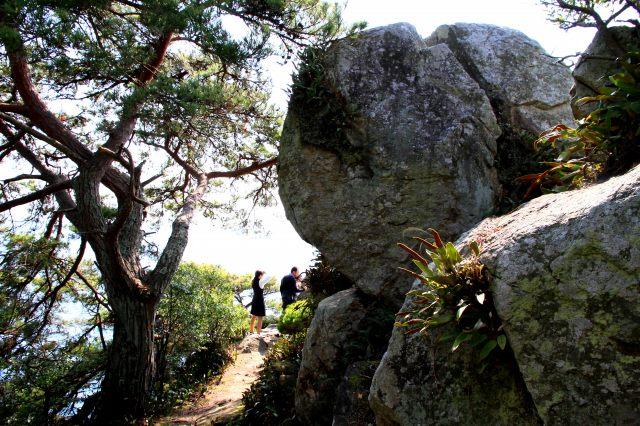 多景島-8