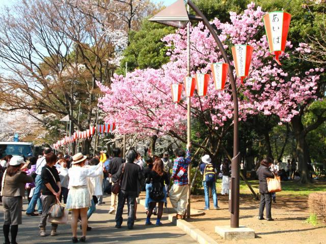 上野公園-3