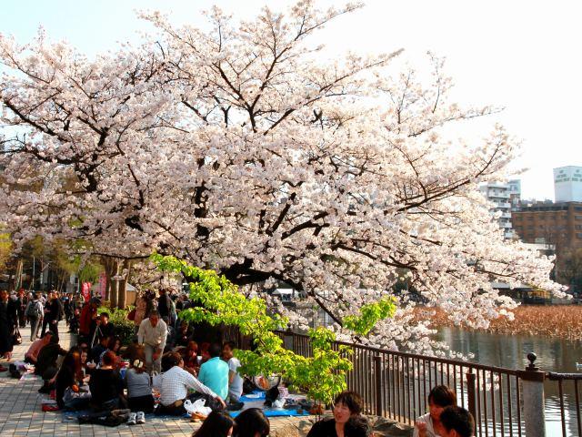 上野公園-7