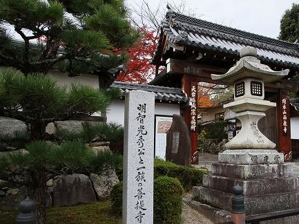 西教寺-2