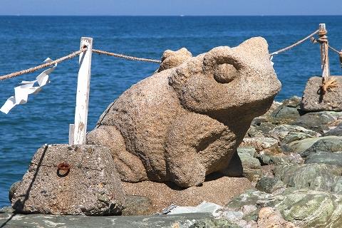 二見蛙-2