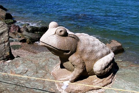 二見蛙-4