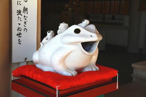 二見蛙-5