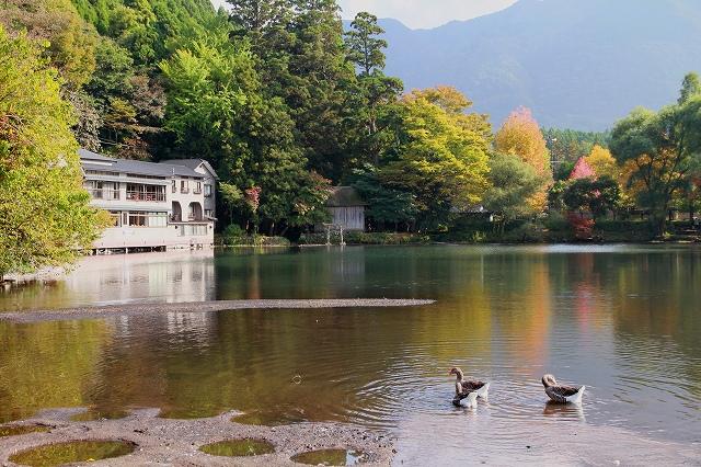 金鱗湖-3