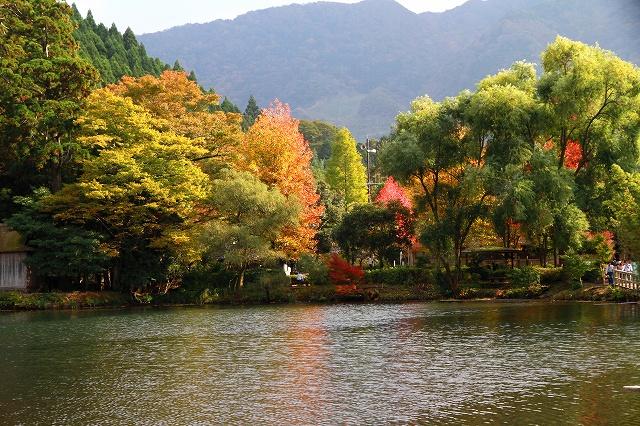 金鱗湖-11