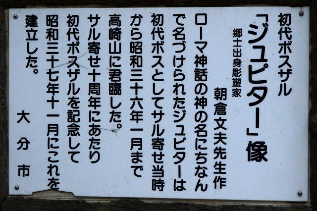 高崎山-10