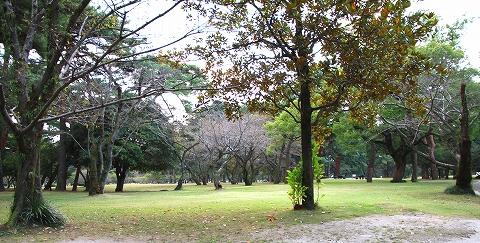 別府公園-7