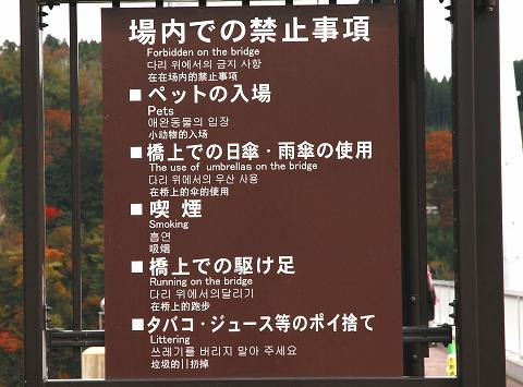大吊橋-4