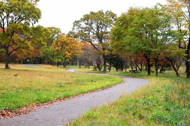 近くの公園-2