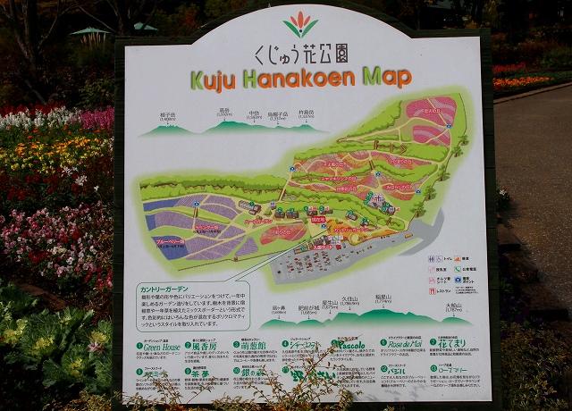くじゅう花公園-7