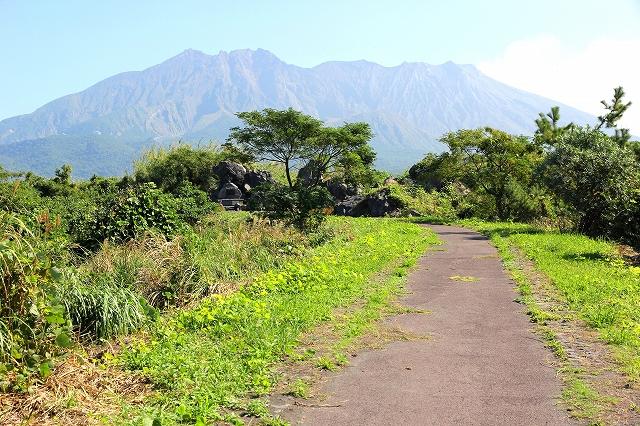 桜島の風景