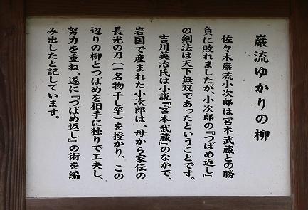 巌流ゆかりの柳-2