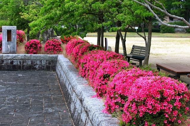 吉香公園の風景-2