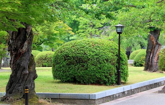 吉香公園の風景-3