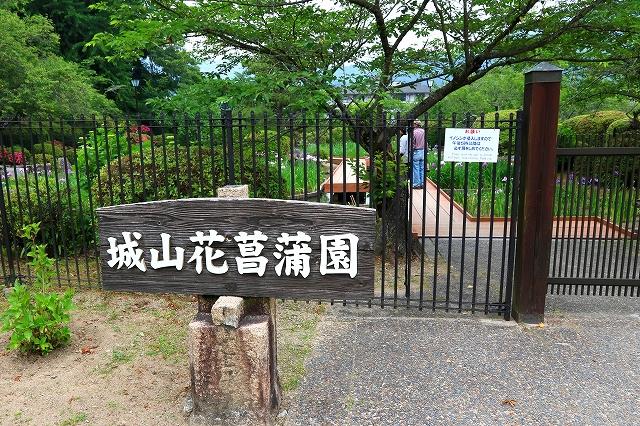 城山花菖蒲園-1