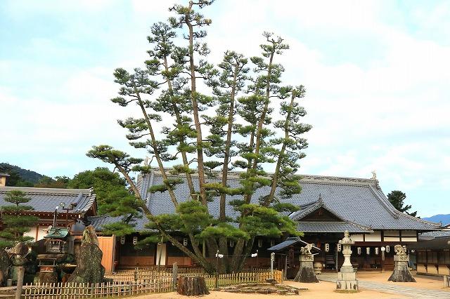 大願寺-2