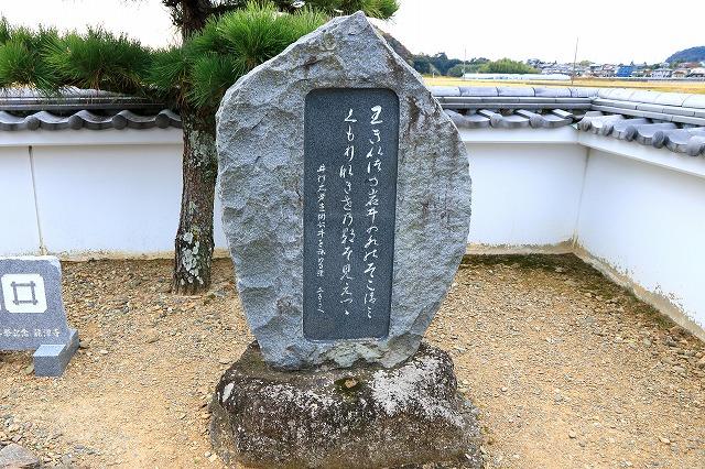 出生井-7