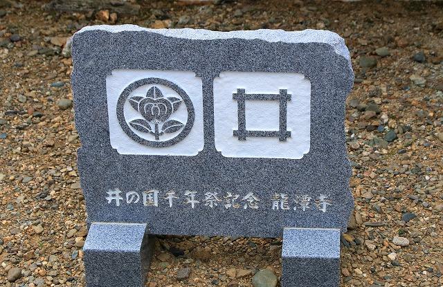 出生井-8
