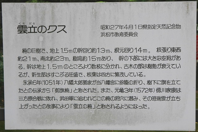 浜松八幡宮-8