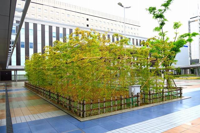 金沢駅-7