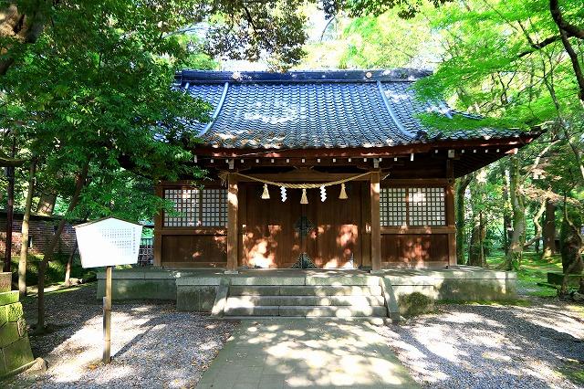 尾山神社-4