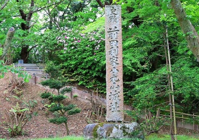 小丸山城址公園-9