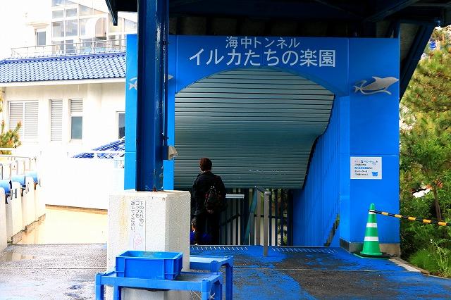 のとじま水族館-12
