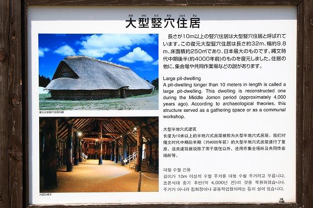 大型竪穴住居-6