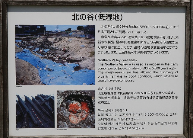 三内丸山遺跡-8