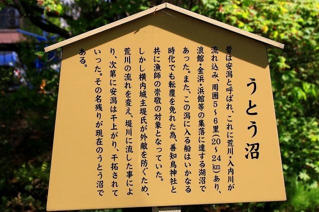 善知鳥神社-6
