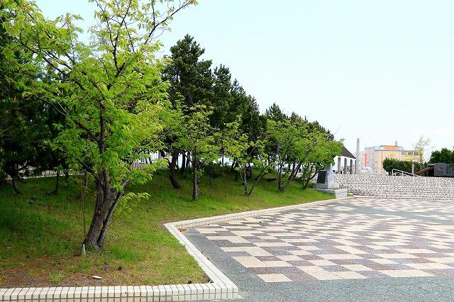 青い海公園-8