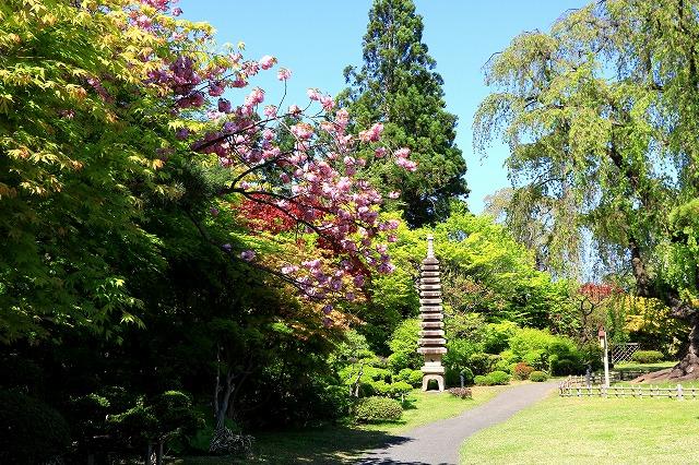 藤田記念庭園-9