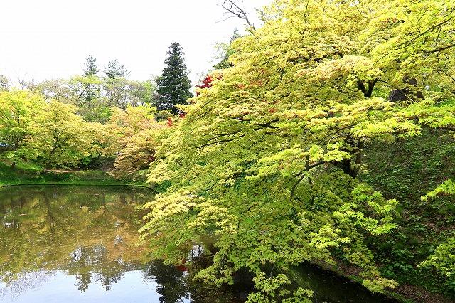 弘前公園-4